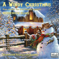 Various Artists / - A Windy Christmas: Fun Music for the Festive Season
