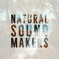 Natural Sound Makers - Falls and Nature
