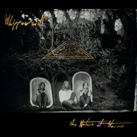 Whippoorwill - The Nature of Storms