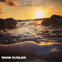 William Gallery - Brain Auxiliar