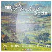 The Pocket Gods - Our Algorithmic Future