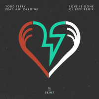 Todd Terry feat. Ami Carmine - Love Is Gone (CJ Jeff Remix)