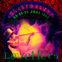 Levellers - Glastonbury '94