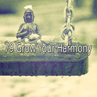 Classical Study Music - 79 Grow Your Harmony