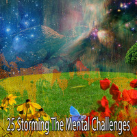 Rain Sounds Sleep - 25 Storming the Mental Challenges