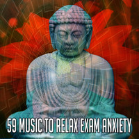 Forest Sounds - 59 Music to Relax Exam Anxiety