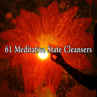 Zen Meditation and Natural White Noise and New Age Deep Massage - 61 Meditative State Cleansers