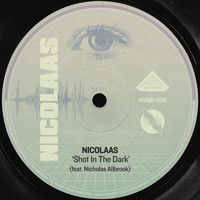 Nicolaas - Shot in the Dark (feat. Nicholas Allbrook)