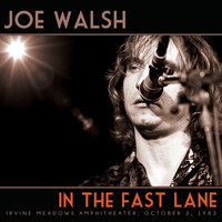 Joe Walsh - In the Fast Lane (Live)