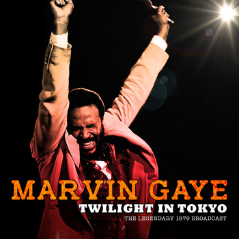 Marvin Gaye - Twilight in Tokyo (Live)