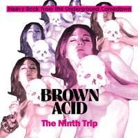 Various Artists / - Brown Acid - The Ninth Trip