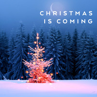 Various Artists / - Christmas Is Coming