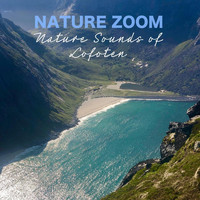 Nature Zoom - Nature Sounds of Lofoten
