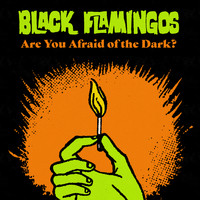 Black Flamingos - Are You Afraid of the Dark?