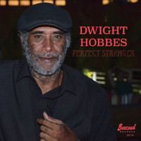 Dwight Hobbes - Perfect Stranger (Explicit)