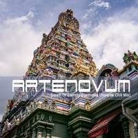 Artenovum - Breath of Eternity (Harmonia Universe Chill Mix)