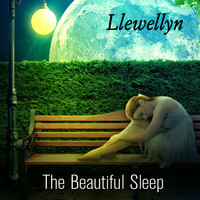 Llewellyn - The Beautiful Sleep
