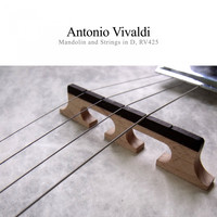 Antonio Vivaldi - Mandolin and Strings, Rv425