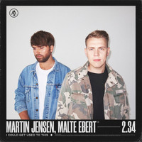 Martin Jensen - I Could Get Used To This