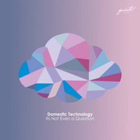 Domestic Technology - Its Not Even a Question