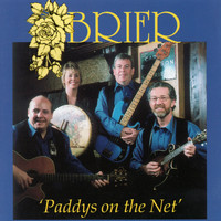 Brier - Paddy's on the Net