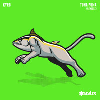 Kyro - Tuna Puma (Remixes)
