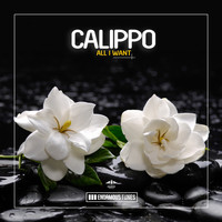 Calippo - All I Want