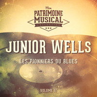 Junior Wells - Les pionniers du Blues, Vol. 17 : Junior Wells