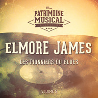 Elmore James - Les pionniers du Blues, Vol. 5 : Elmore James