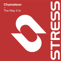 "CHAMELEON - The Way It Is (Brothers in Rhythm 12"" Mix)"