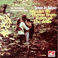 The Sensational Guitars of Dan & Dale - Love Is Blue, We Can Fly, Theme From Valley of the Dolls