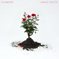 James Spaite - Flowers (Explicit)