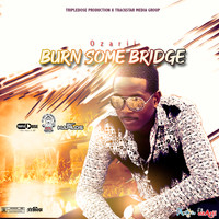 Ozarii - Burn Some Bridge