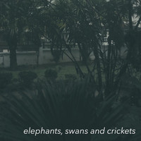 fzpz / - Elephants, Swans and Crickets