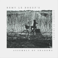 Remy Le Boeuf - Assembly of Shadows