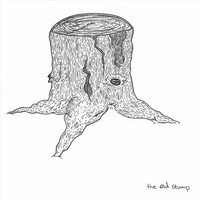 Buzz - The Old Stump