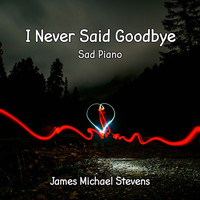 James Michael Stevens - I Never Said Goodbye - Sad Piano