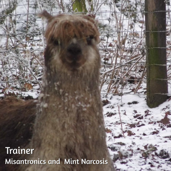 Misantronics / Mint Narcosis - Trainer