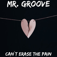 Mr. Groove - Can't Erase the Pain