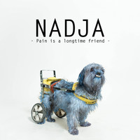 Nadja - Pain Is a Longtime Friend
