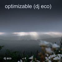 DJ Eco - Optimizable