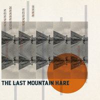 Toby Hay - The Last Mountain Hare