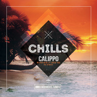 Calippo - Never Really Liked You (The Remixes)
