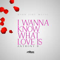 Anthony B - I Wanna Know What Love Is