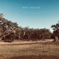 Nate Scholes - Feels Like Ages
