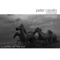 Peter Cavallo & Vaughan Jones - A Matter of the Soul (Reworked)