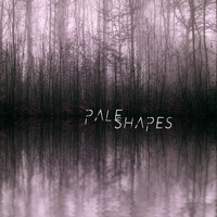 symbiotic stasis - Pale Shapes