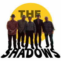 The Shadows - Gimme Some Pickleball