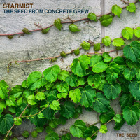 Starmist - The Seed From Concrete Grew