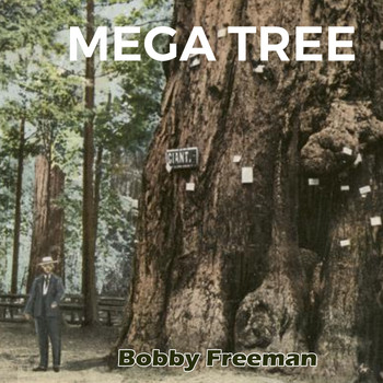 Bobby Freeman - Mega Tree
